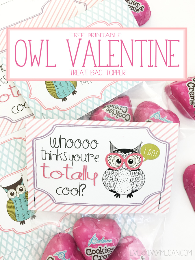 picture regarding Owl Miss You Printable titled Totally free Printable Owl Valentine Daily Megan